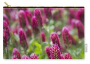 Crimson Clover In All Its Glory Carry-all Pouch
