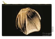Crinoid Fossil Carry-all Pouch