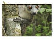 Crowned Lemur Eulemur Coronatus Female Carry-all Pouch