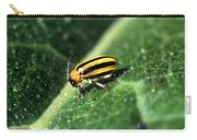Cucumber Beetle Carry-all Pouch