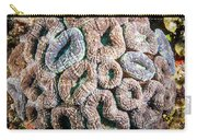 Curler Coral Carry-all Pouch
