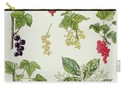 Currants And Berries Carry-all Pouch by Elizabeth Rice
