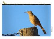 Curved Billed Thrasher Sitting On A Post Carry-all Pouch