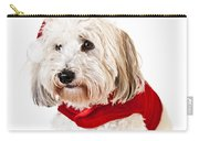 Cute Dog In Santa Outfit Carry-all Pouch by Elena Elisseeva