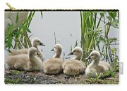 Cygnets I Carry-all Pouch