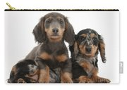 Dachshund And Merle Dachshund Pups Carry-all Pouch