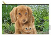 Dachshund And Tabby Carry-all Pouch