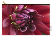 Dahlia 'country Boy' Carry-all Pouch