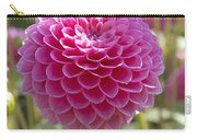 Dahlia Dahlia Sp Lindas Baby Variety Carry-all Pouch
