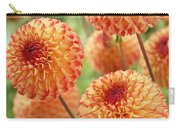 Dahlia Dahlia Sp Mirella Variety Flowers Carry-all Pouch