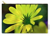 Daisy A Different Look Carry-all Pouch