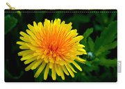 Dandy Among Daisies Carry-all Pouch