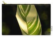 Dappled Ginger Leaf Carry-all Pouch