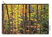 Dappled Sun On Fall Colors Carry-all Pouch