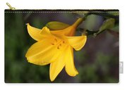Day Lilly Carry-all Pouch