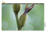 Dazzling Canna Seed Pods Carry-all Pouch by Kathy Clark