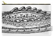 Decorative French Cuisine Carry-all Pouch