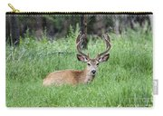 Deer At Rest Carry-all Pouch