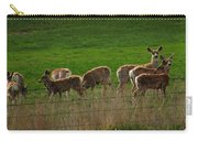 Deer In The Meadow Carry-all Pouch