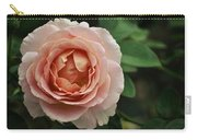 Delicate Pink Rose Carry-all Pouch