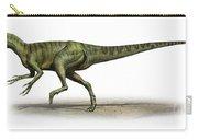 Deltadromeus Agilis, A Prehistoric Era Carry-all Pouch