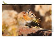 Desert Chipmunk Eating His Breakfast Carry-all Pouch