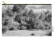 Desert Cloud Bw Palm Springs Carry-all Pouch