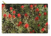 Desert Paint Brush Carry-all Pouch