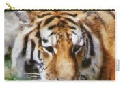 Detroit Tiger Carry-all Pouch