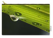 Dew On Leaf, Germany Carry-all Pouch