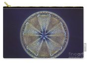 Diatom - Actinoptychus Heliopelta Carry-all Pouch