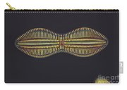 Diatom - Diploneis Crabro Carry-all Pouch by Eric V. Grave