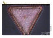 Diatom - Triceratium Formosum Carry-all Pouch