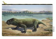 Dicynodon Trautscholdi, A Prehistoric Carry-all Pouch