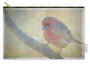 Digitally Painted Finch With Texture II Carry-all Pouch