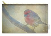 Digitally Painted Finch With Texture IIi Carry-all Pouch