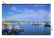 Dingle Town & Harbour, Co Kerry, Ireland Carry-all Pouch