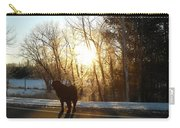 Dog In Morning Sun Carry-all Pouch