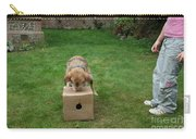 Dog Playing Carry-all Pouch by Mark Taylor