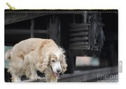 Dog Walking Under A Train Wagon Carry-all Pouch