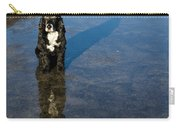 Dog With Reflections And Shadow Carry-all Pouch