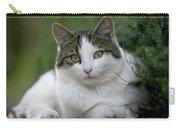 Domestic Cat Felis Catus Portrait Carry-all Pouch