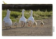 Domestic Geese With Goslings Carry-all Pouch