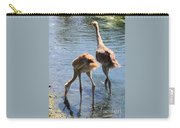 Sandhills Double Dipping Carry-all Pouch