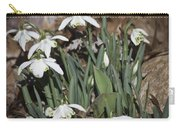 Double Snowdrops Squared Carry-all Pouch