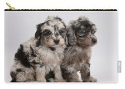 Doxie-doodle Pups Carry-all Pouch