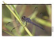 Dragonfly - Little Boy Blue Carry-all Pouch