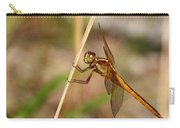 Dragonfly Looking At You Carry-all Pouch