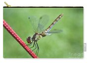 Dragonfly On A String Carry-all Pouch