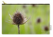 Dried Thistle Carry-all Pouch by Carlos Caetano